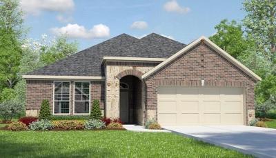 Rosenberg TX Single Family Home For Sale: $287,990