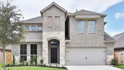 Pearland Single Family Home For Sale: 3716 Ashford Bridge Lane