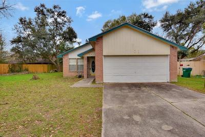 Houston Single Family Home For Sale: 3919 Suttonford Drive