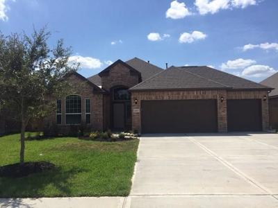 Porter Single Family Home For Sale: 21627 Tea Tree Olive Place