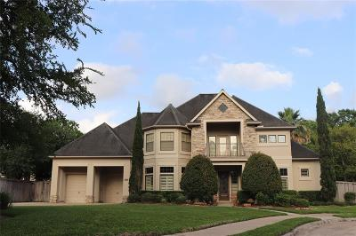 Houston Single Family Home For Sale: 15107 Bronze Bay Court