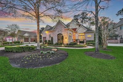 The Woodlands Single Family Home For Sale: 46 Quail Rock Place