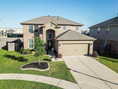 Katy Single Family Home For Sale: 26626 Grey Sparrow Drive