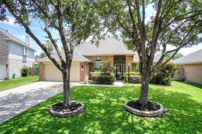 League City Single Family Home For Sale: 3223 White Sands Way