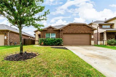 Katy Single Family Home For Sale: 23603 San Servero Drive