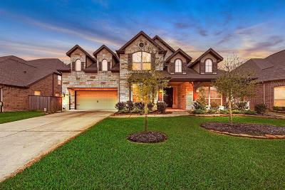 Tomball Single Family Home For Sale: 13615 Butterfly Bush Lane