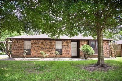Tomball Single Family Home For Sale: 211 S Poplar Street
