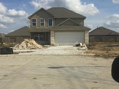Single Family Home For Sale: 9238 Chloe