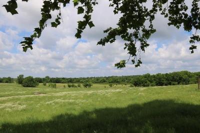 Grimes County Farm & Ranch For Sale: Tbd - Lot 3 Riva Ranch Fm 149 E