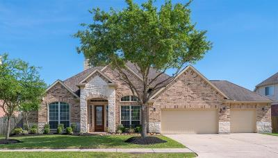 Pearland Single Family Home For Sale: 3315 Redwood Grove