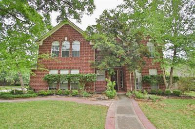 Tomball Single Family Home For Sale: 24218 Royalwick Drive