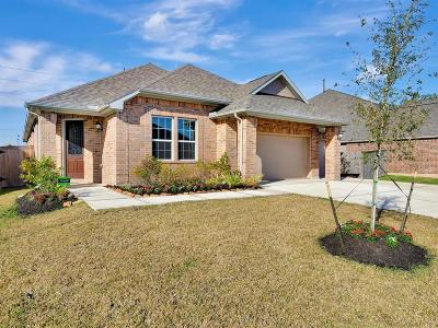 Manvel Single Family Home For Sale: 2607 Cutter Court