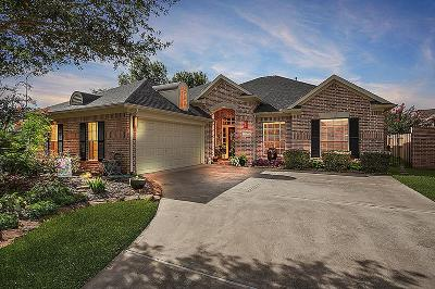 Single Family Home For Sale: 1226 Brinson