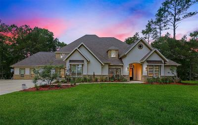 Magnolia Single Family Home For Sale: 28303 Meadow Falls
