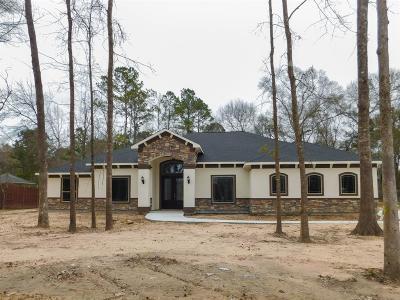 Porter Single Family Home For Sale: 22709 Tamesi Drive