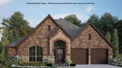 Fort Bend County Single Family Home For Sale: 23731 Via Viale Drive