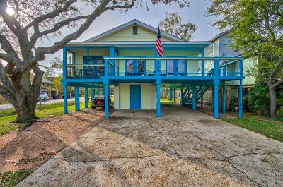Clear Lake Shores Single Family Home For Sale: 710 E Shore Drive