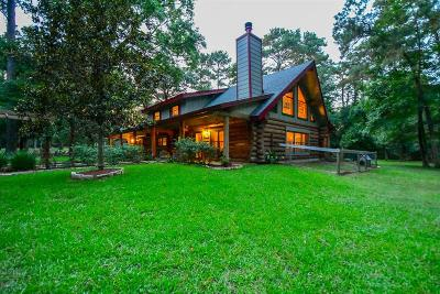 Single Family Home For Sale: 38614 Angel Oaks Drive