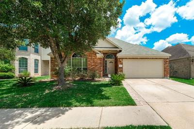 Houston Single Family Home For Sale: 2922 Westerfield Lane
