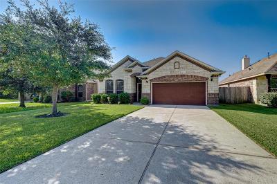 Single Family Home For Sale: 7203 Durango Creek Drive