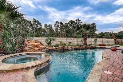 Spring Single Family Home For Sale: 28318 Calaveras Lake Drive
