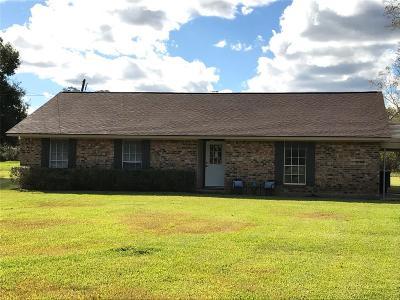 Brazoria Single Family Home For Sale: 3319 County Road 347