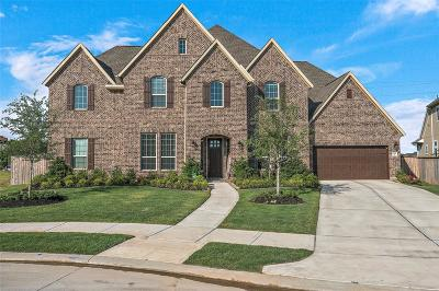 Katy Single Family Home For Sale: 2707 Winthrop Meadow Way
