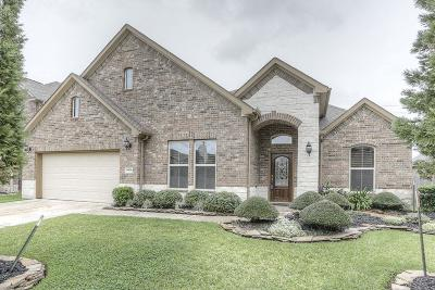 Friendswood Single Family Home For Sale: 4409 W Maple Drive
