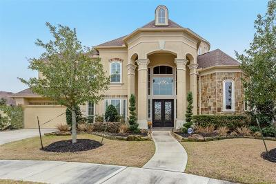 Sugar Land Single Family Home For Sale: 5107 Olive Hill Boulevard