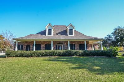 Sealy Single Family Home For Sale: 2260 Fm 1094 Road