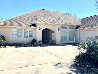 Baytown Single Family Home For Sale: 4218 Bear Creek Trace