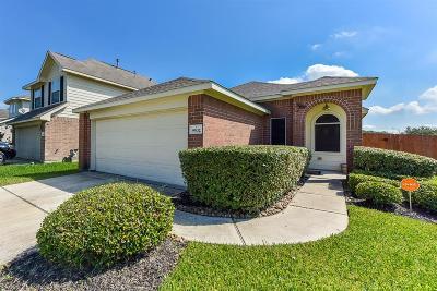 Houston Single Family Home For Sale: 9502 Alex Springs Lane