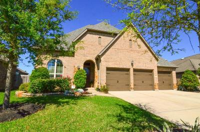 Manvel Single Family Home For Sale: 3035 Rabbit Brush Lane