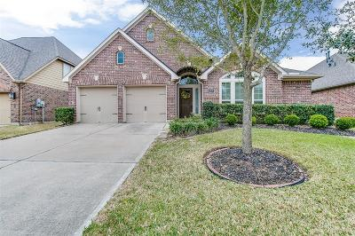 Pearland Single Family Home For Sale: 14110 Timber Bluff Drive