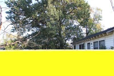 Houston Single Family Home For Sale: 13825 Reo Street