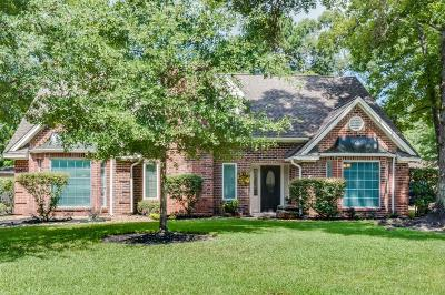 Houston Single Family Home For Sale: 3519 Deerbrook Drive