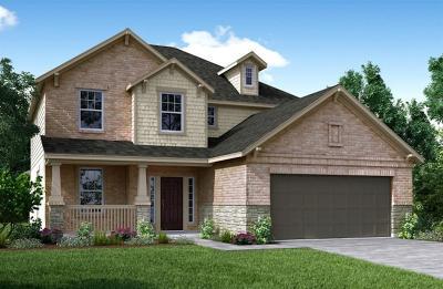 Rosenberg Single Family Home For Sale: 9011 Japonica Drive