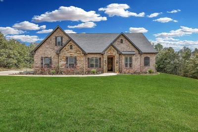 Montgomery Single Family Home For Sale: 11412 Prince Henry Court
