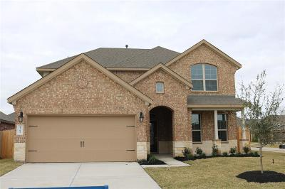 Pearland Single Family Home For Sale: 2702 Merlin Lane