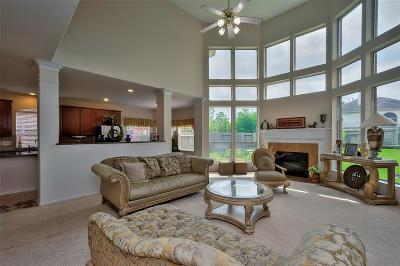 Sugar Land Single Family Home For Sale: 13117 Sunset Cliff Court