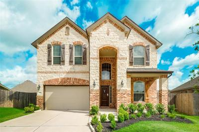 Tomball Single Family Home For Sale: 13034 Ambrose Reach Lane