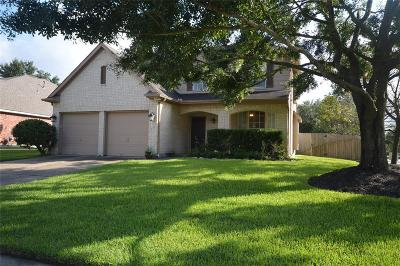 Houston Single Family Home For Sale: 9731 Green Valley Lane