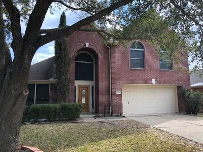 Houston Single Family Home For Sale: 8738 Willancy Lane
