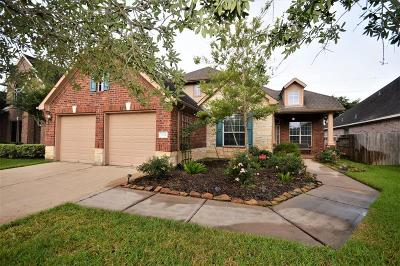 Manvel Single Family Home For Sale: 3718 Tumbling Falls Drive