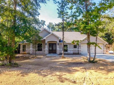 Single Family Home For Sale: 27728 Rio Blanco Drive