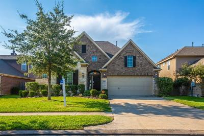 League City TX Single Family Home For Sale: $289,000