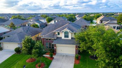 Southern Trails Single Family Home For Sale: 13103 Southern Creek Drive
