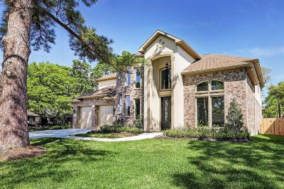 Houston Single Family Home For Sale: 14134 Woodthorpe Lane