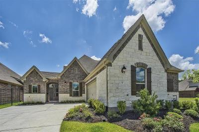 The Woodlands Single Family Home For Sale: 22 Peace Tree Way
