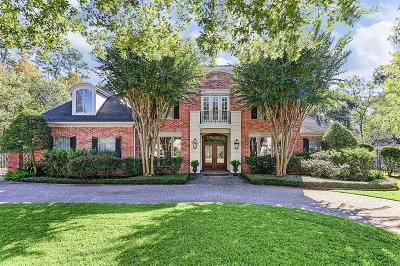 Houston Single Family Home For Sale: 2 Dunnam Lane